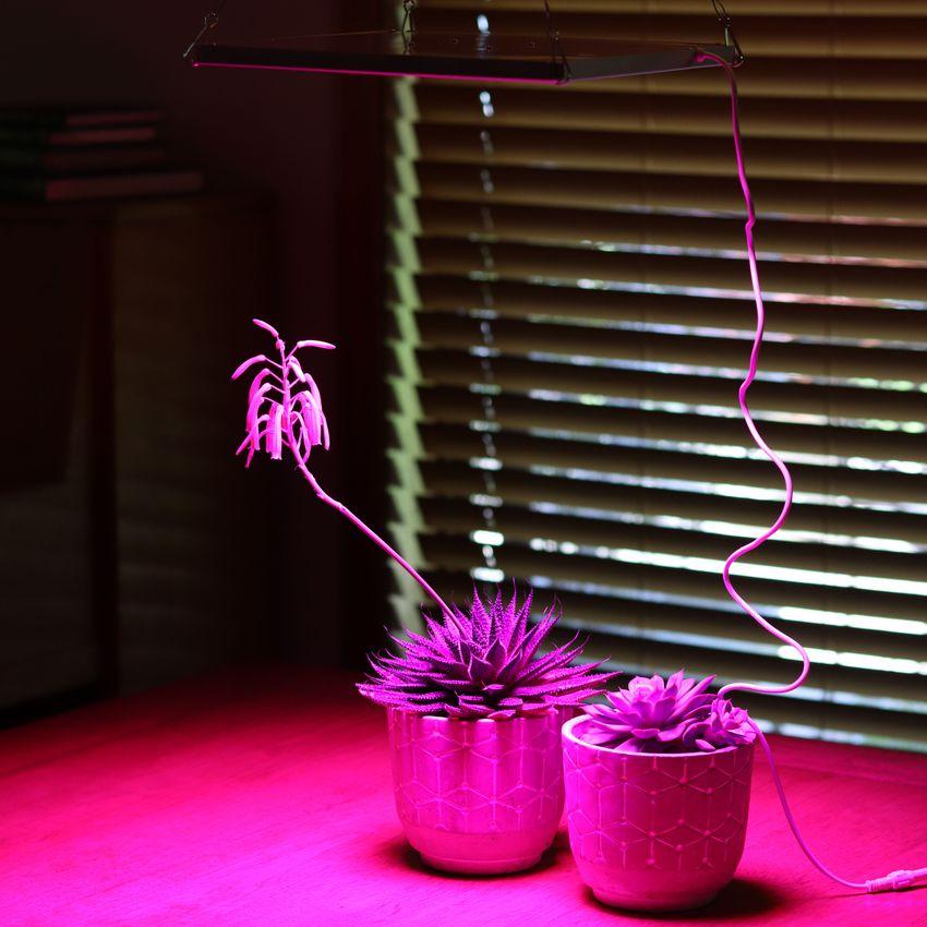 Roleadro LED 75W Grow Light