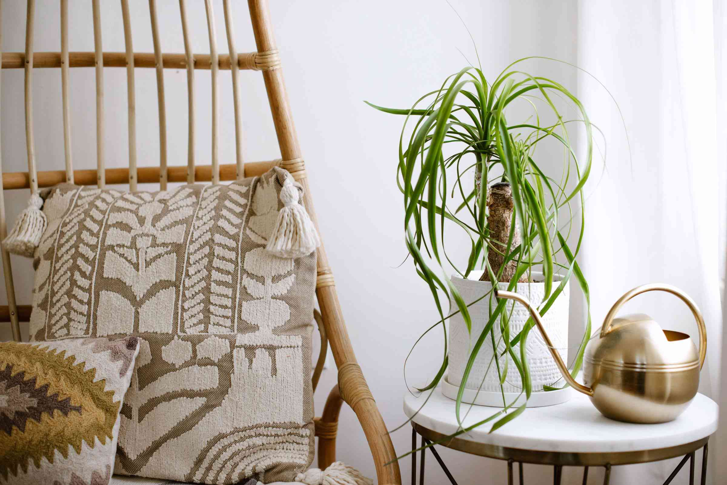 Ponytail palm in white pot with long wispy fronds next to gold watering can and patterned pillows