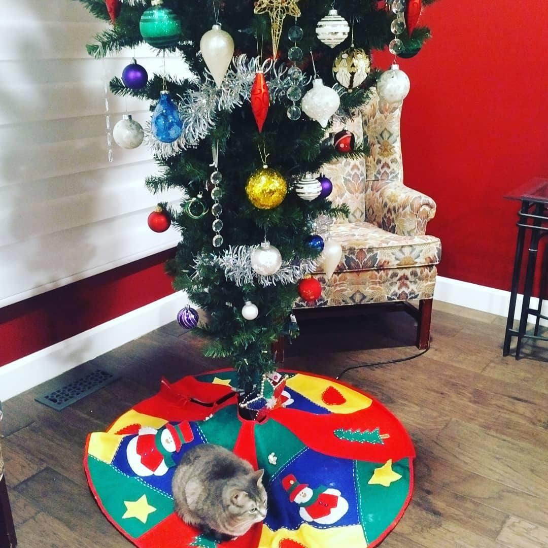 simplemente decorado al revés árbol de navidad