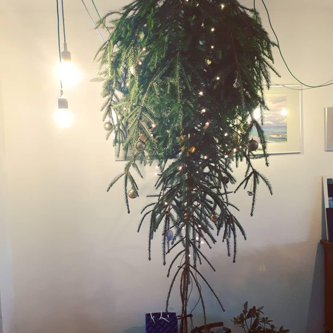 Natural upside down Christmas tree