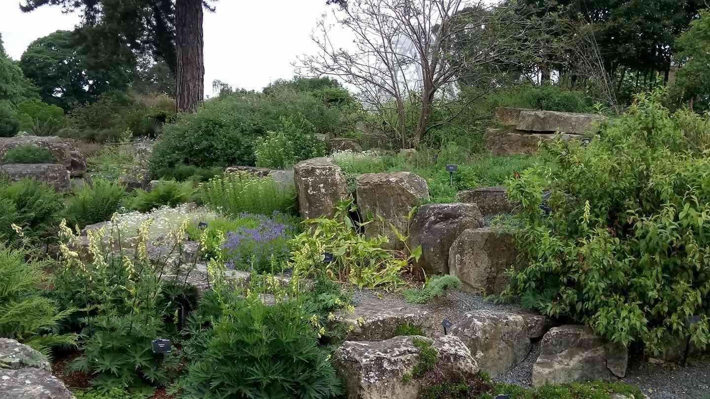 Lush terrace rock garden