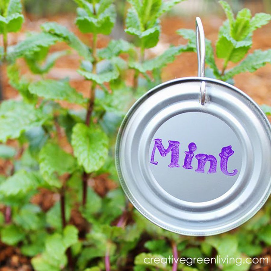 recycled can lid garden plant markers