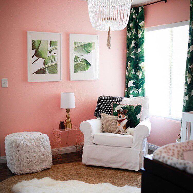 Vivero rosa: coral tropical y verde