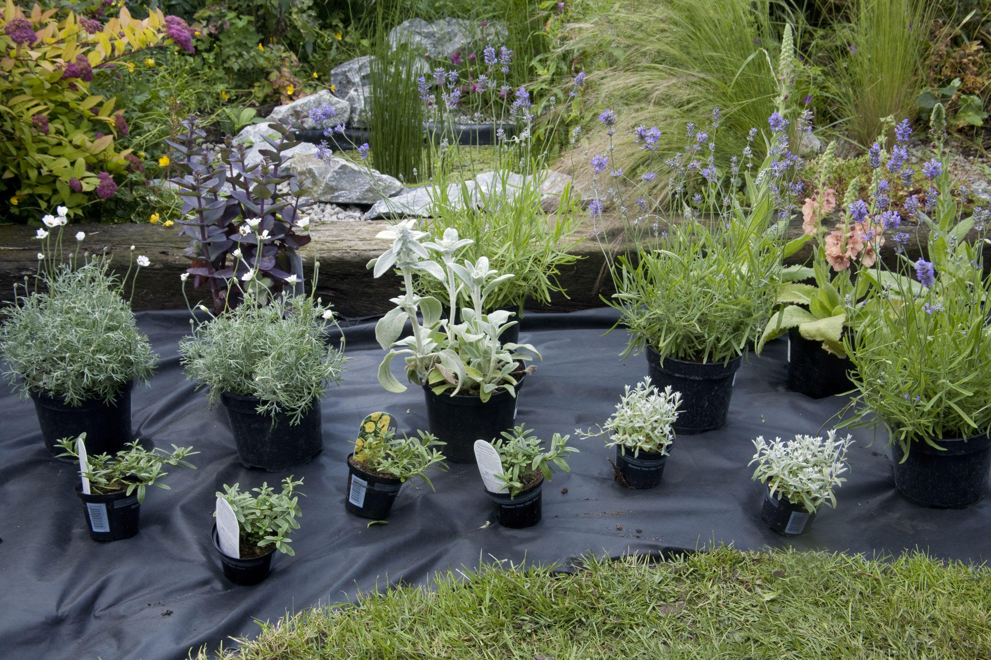 clever ways to reuse plastic gardening pots