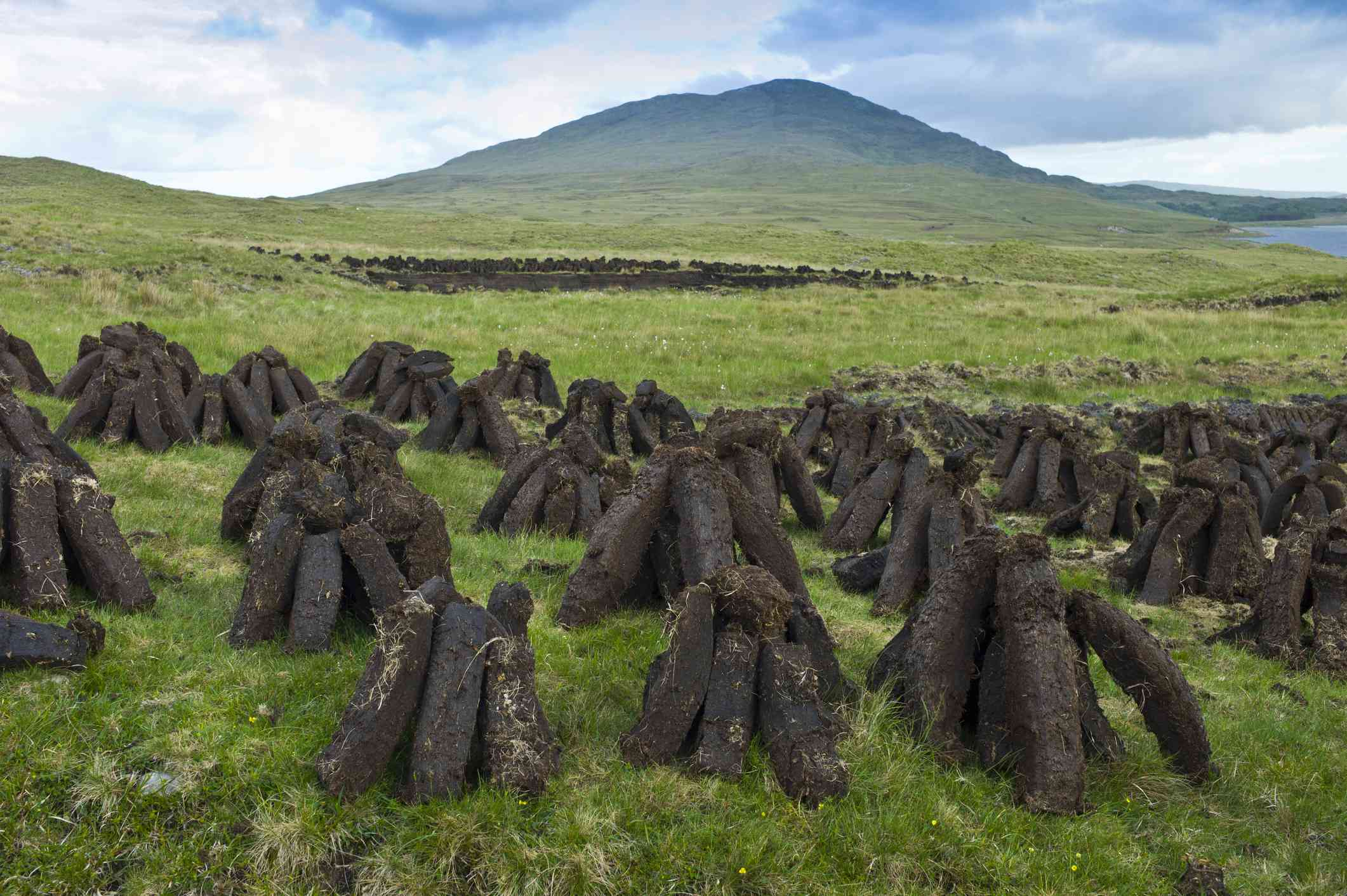 Peat bogs in Ireland