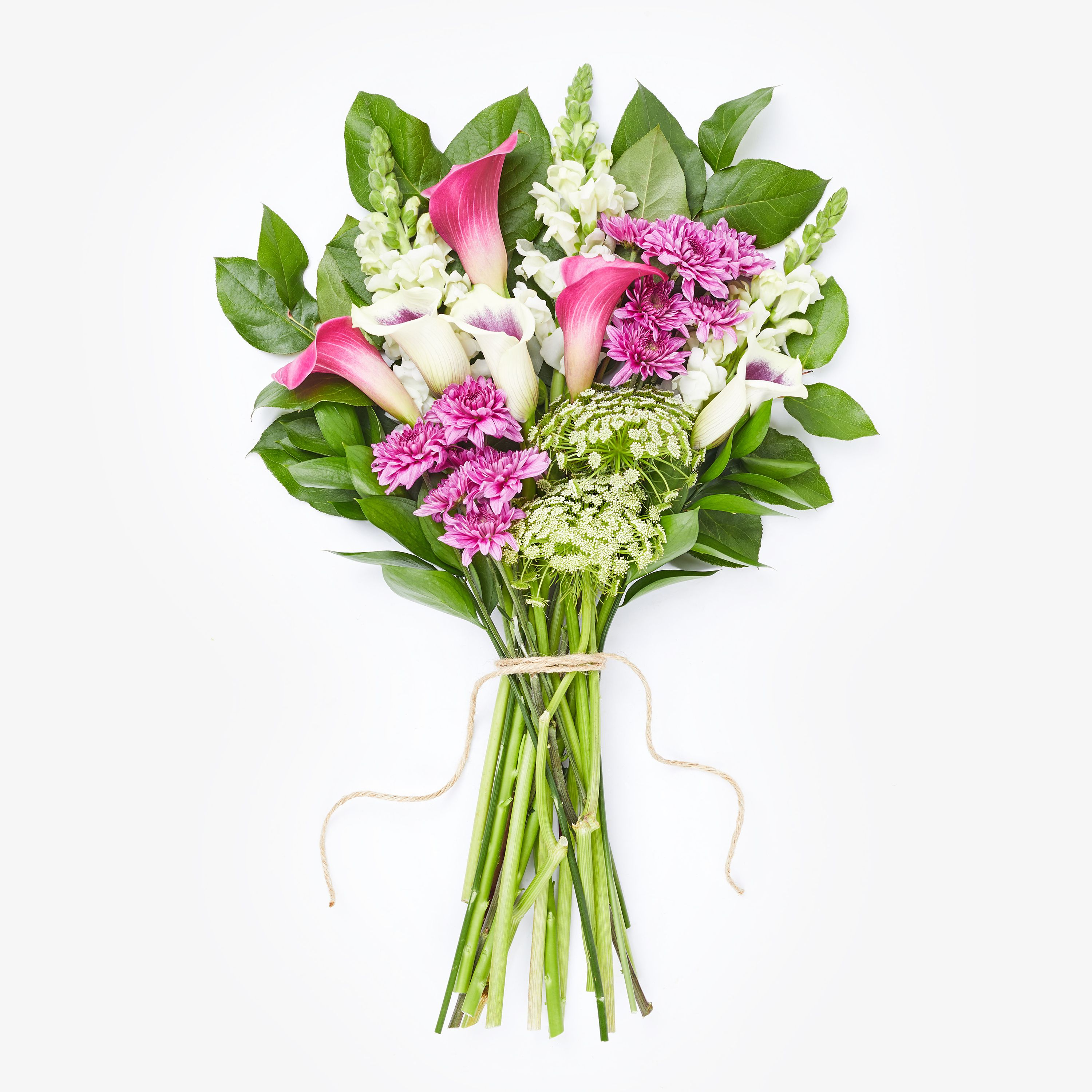 Best place to buy roses online-7353