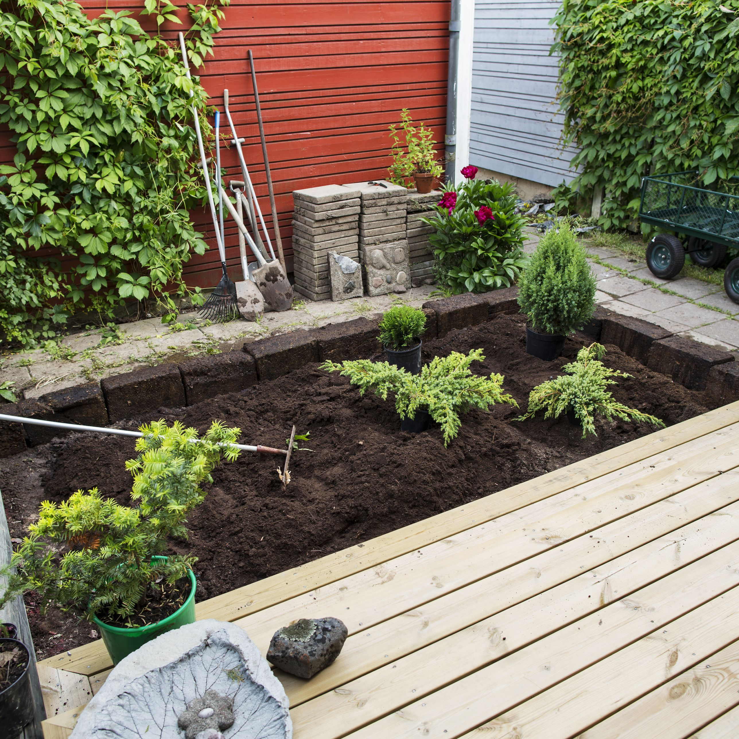 Small Gardens Without Grass - No Grass Back Yard Home ...
