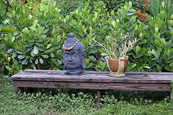 Buddha head sculpture and potted plant on low wooden bench in lush green garden.