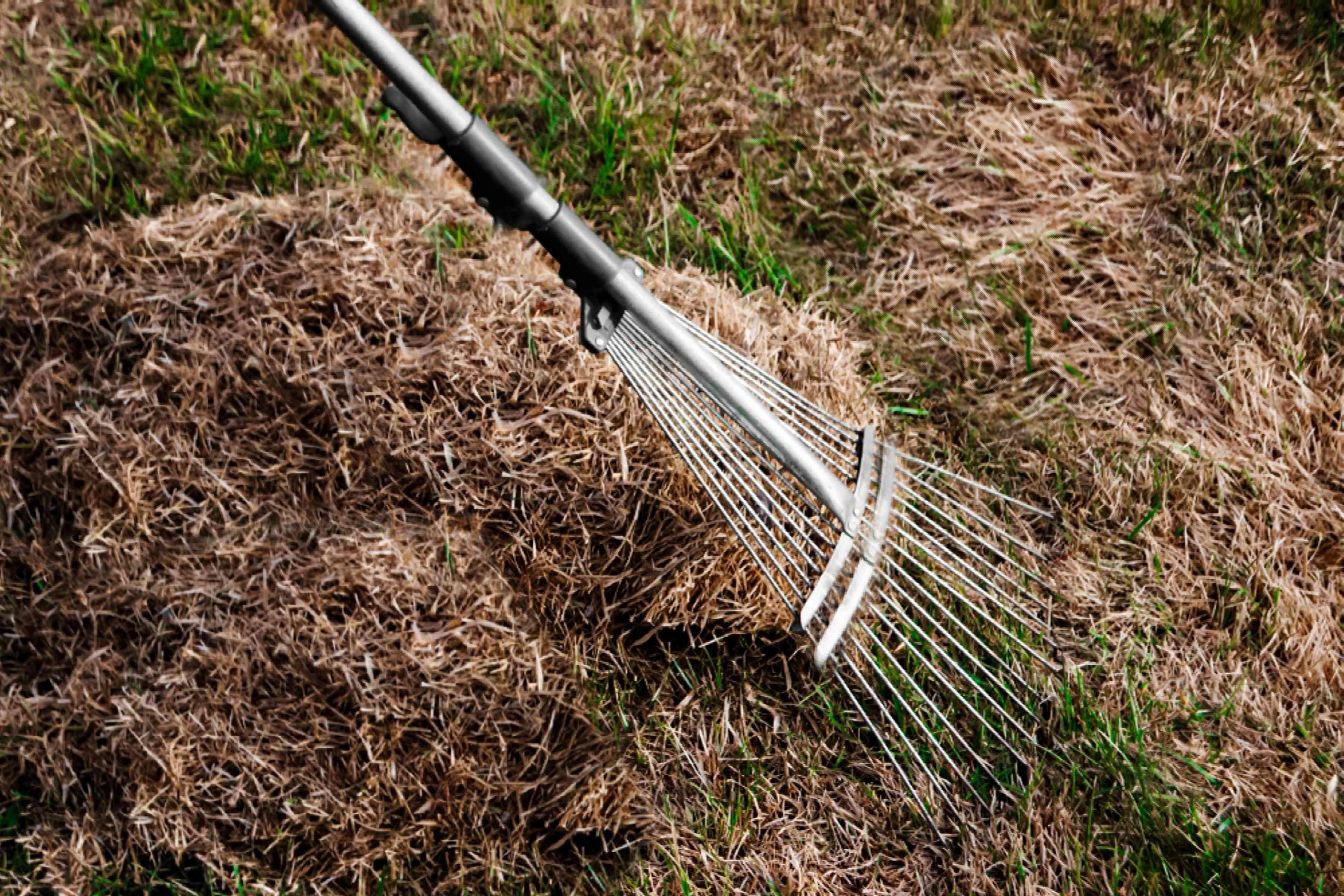 maintaining the yard