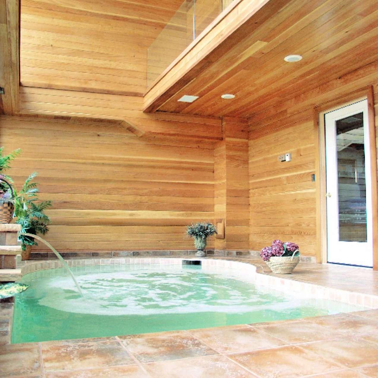 indoor pool design with water features