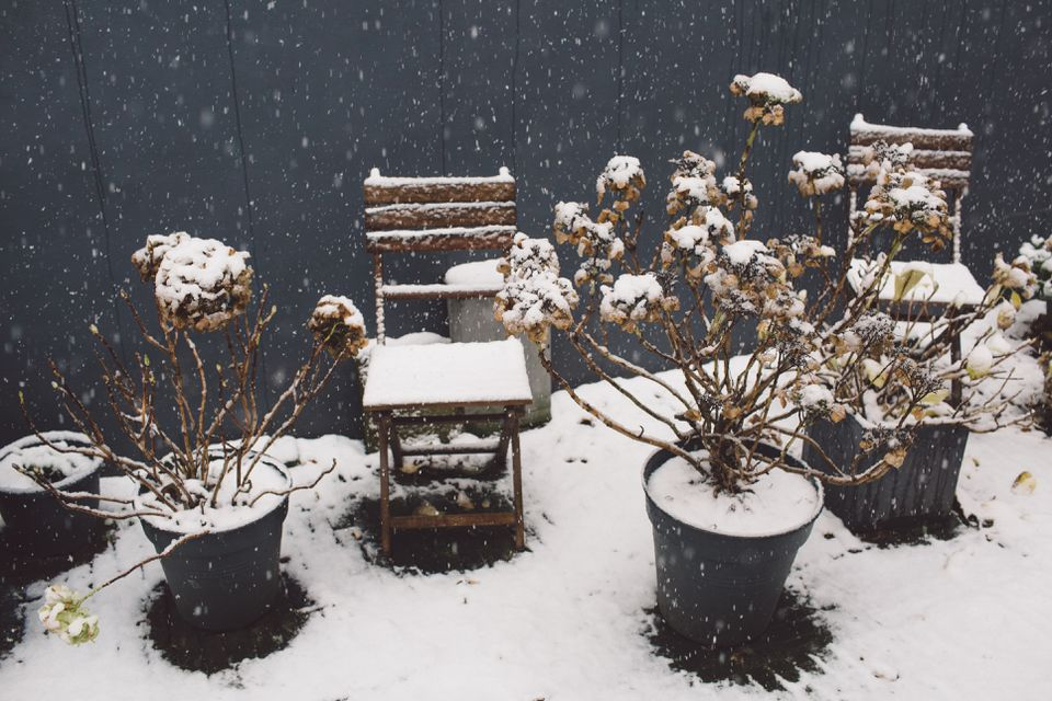 High Angle View Of Snow Covered Chairs And Potted Plants