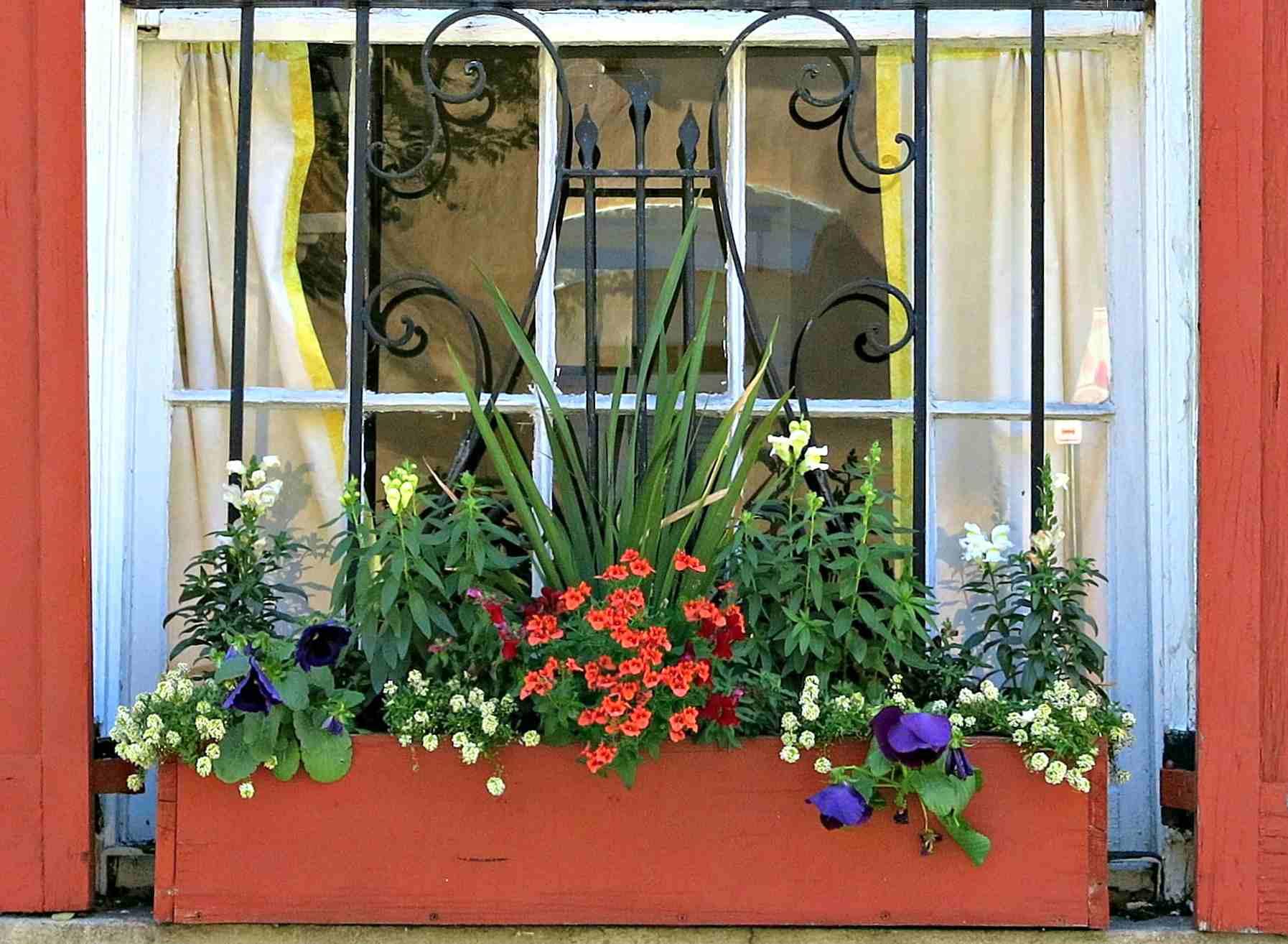church street window box