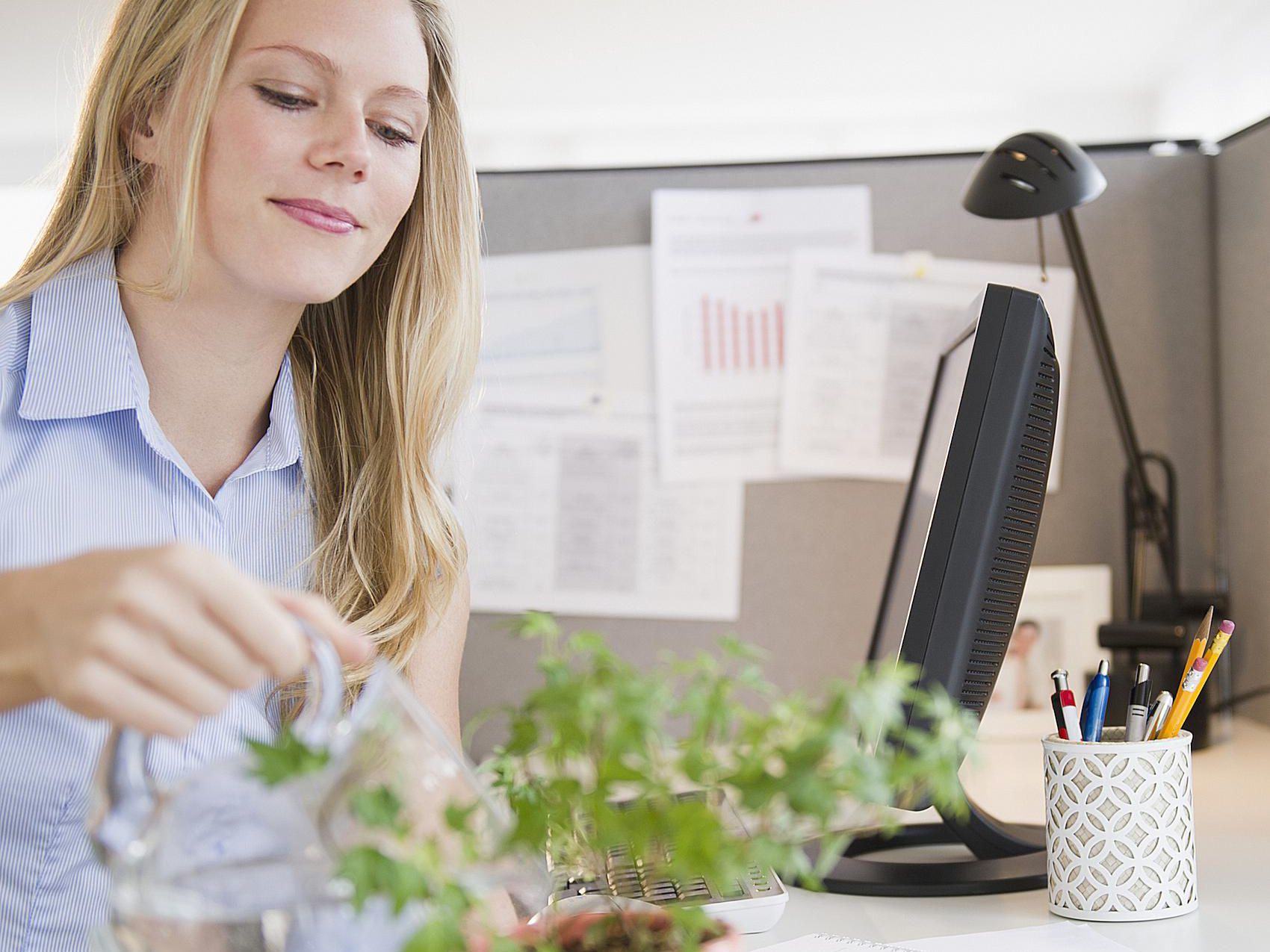 decorate office cubicles office holiday decor.htm 6 ways to give your office cubicle better feng shui  office cubicle better feng shui