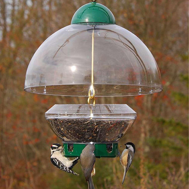 Droll Yankees Big Top Bird Feeder