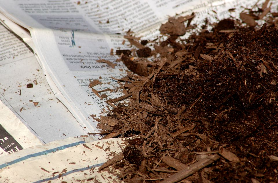 Mulch pile lying on sheets of newspaper.