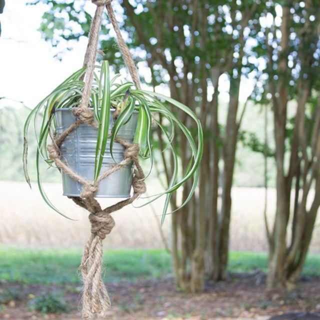 A macrame plant hanger