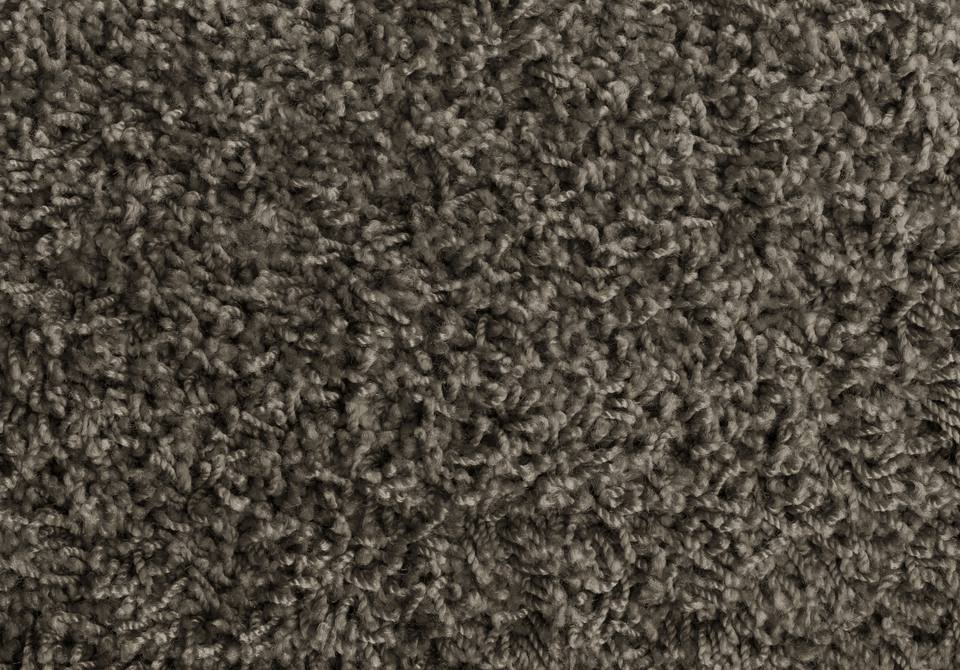 Gray frieze carpet