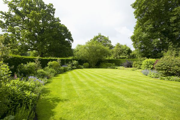 Lawn surrounded by border planting, The Lowes Garden, The Coach House, Haslemere, Surrey, UK