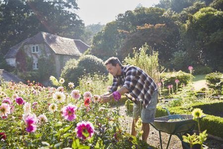 How To Grow An Amazing Flower Garden