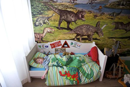 Themed Decorating Ideas For Boys Rooms