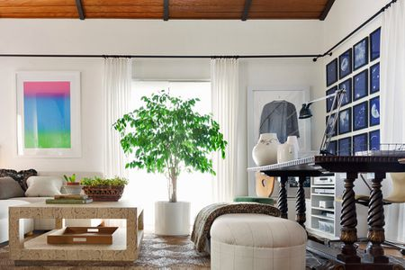 aab9f79e28c Potted Tree Makes a Beautiful Focal Point. elegant home office in living  room castro district