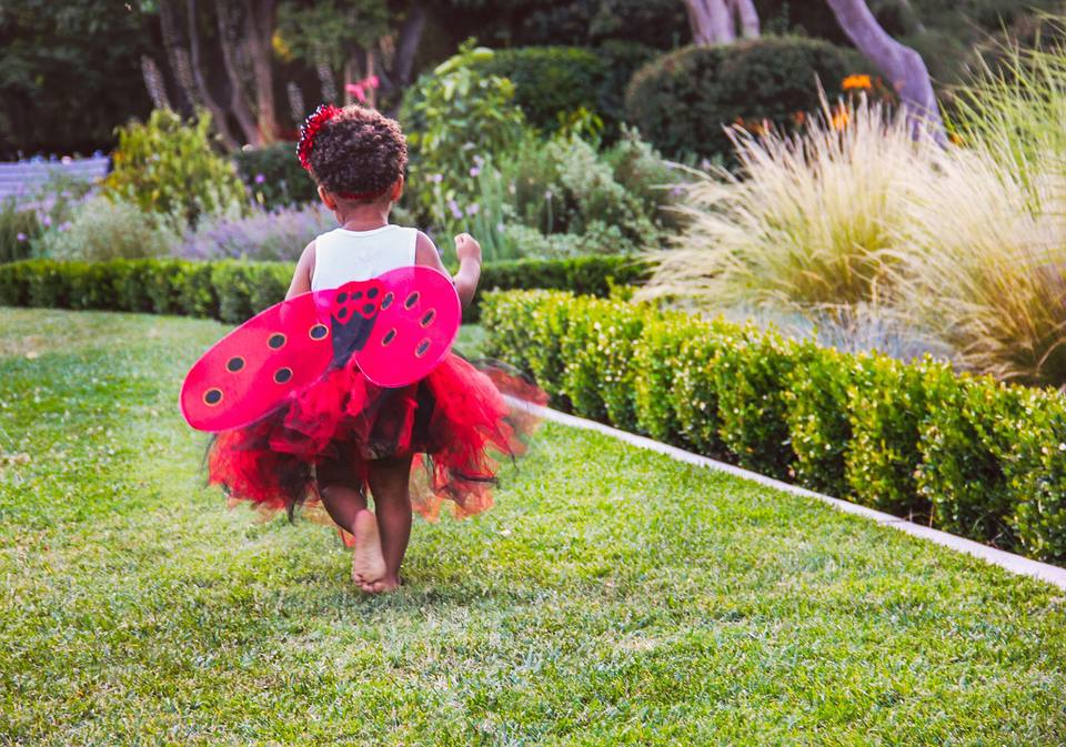 Child dressed as a ladybug