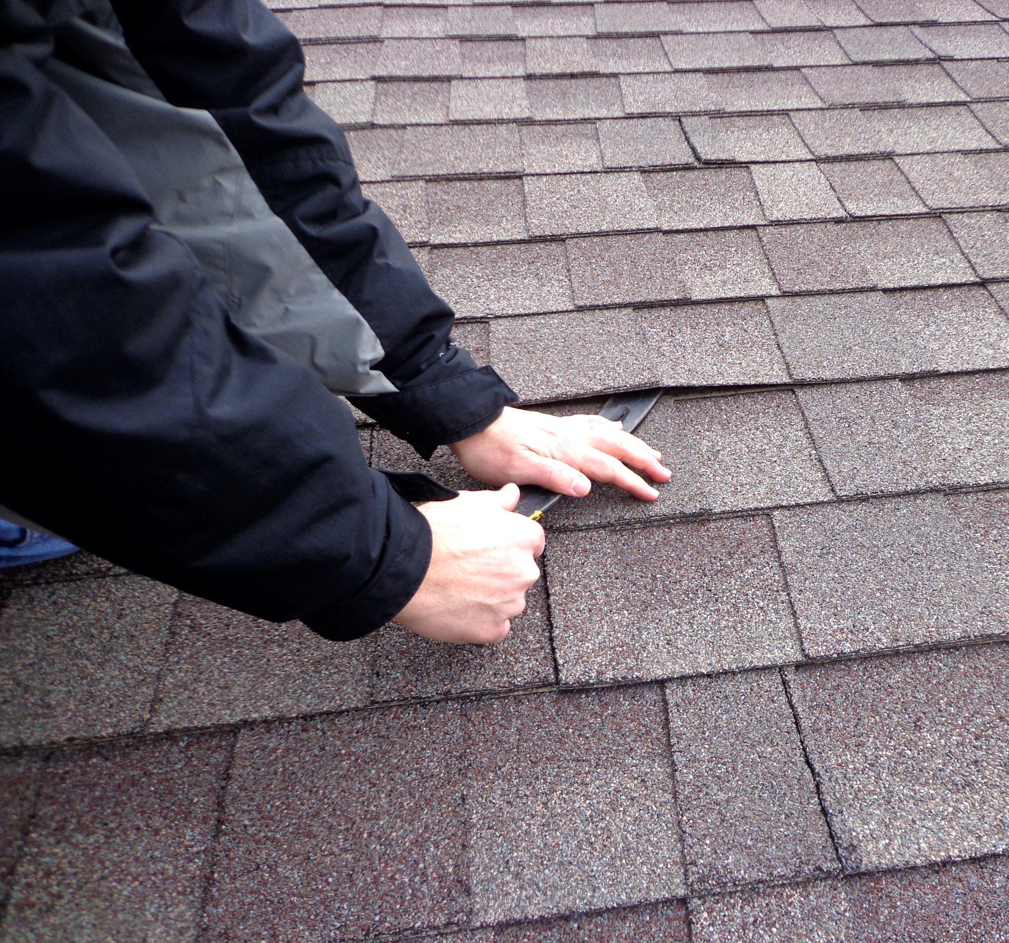 Remove damaged shingle