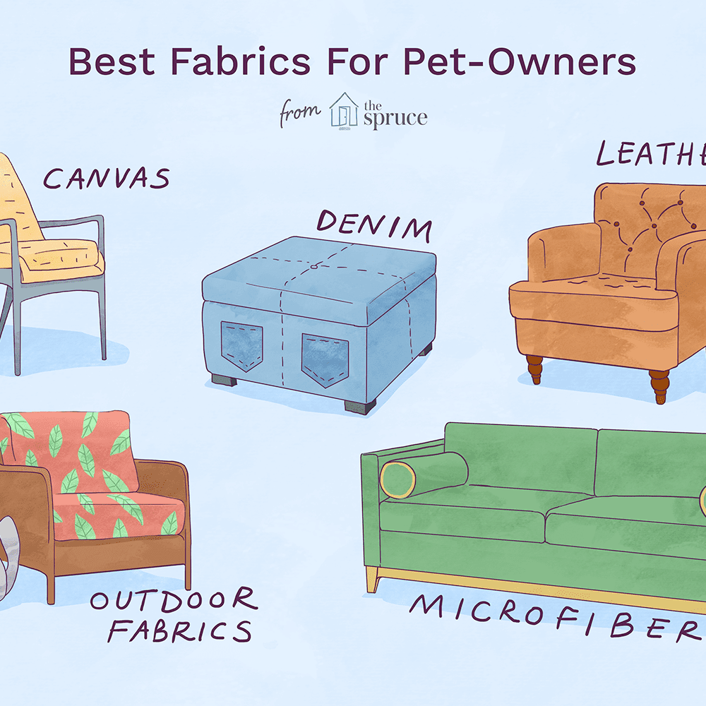 5 Great Pet-Friendly Fabrics for Your Home