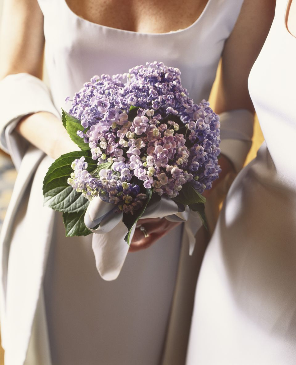 12 Summer Wedding Flowers in Season