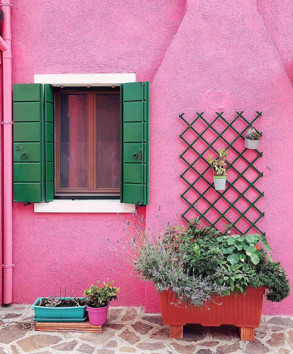 A pink exterior wall with green window
