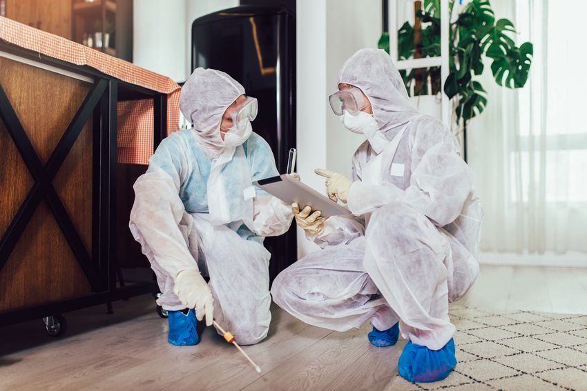 exterminators wearing protective suits in a home