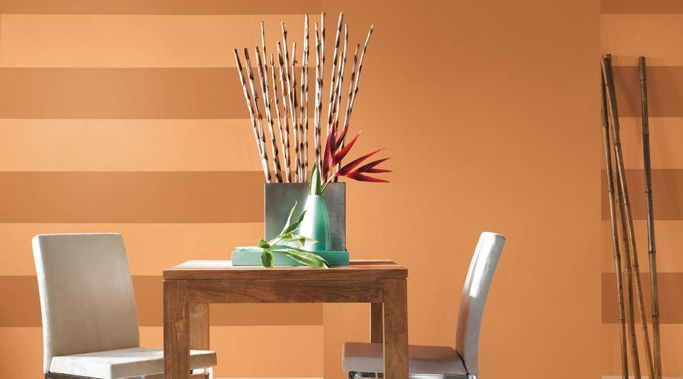 Sherwin-Williams Paint Stripe Ideas
