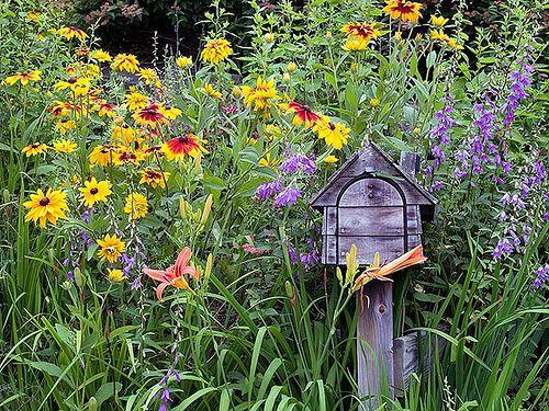 Informal Mailbox Garden