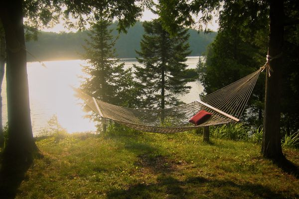 Hammock hanging in the woods near a lake