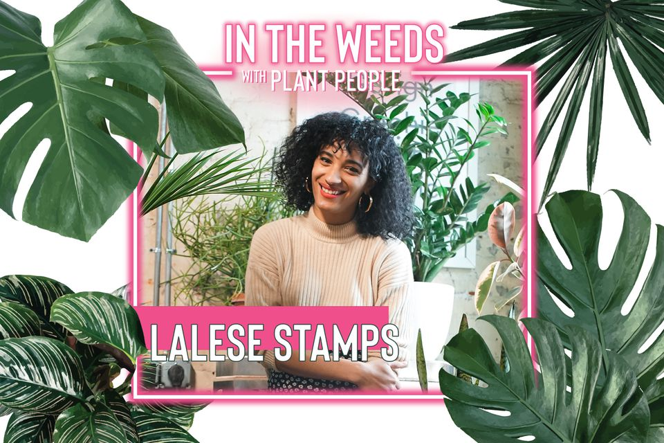 Lalese Stamps, ceramics creator, for In the Weeds With Plant People