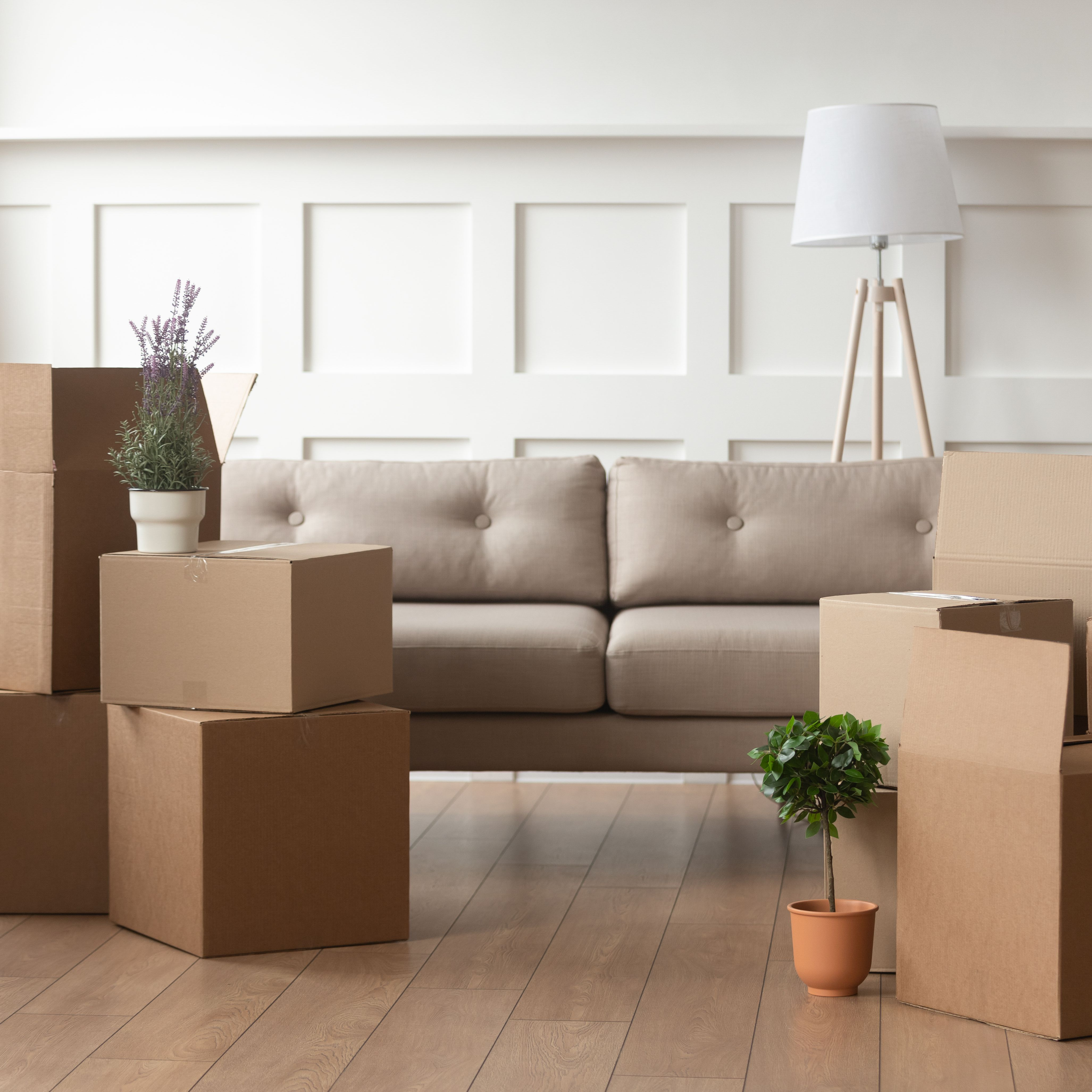 How To Arrange Furniture Like An Expert