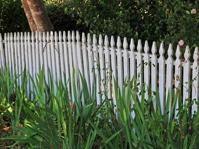 Fence Building Law