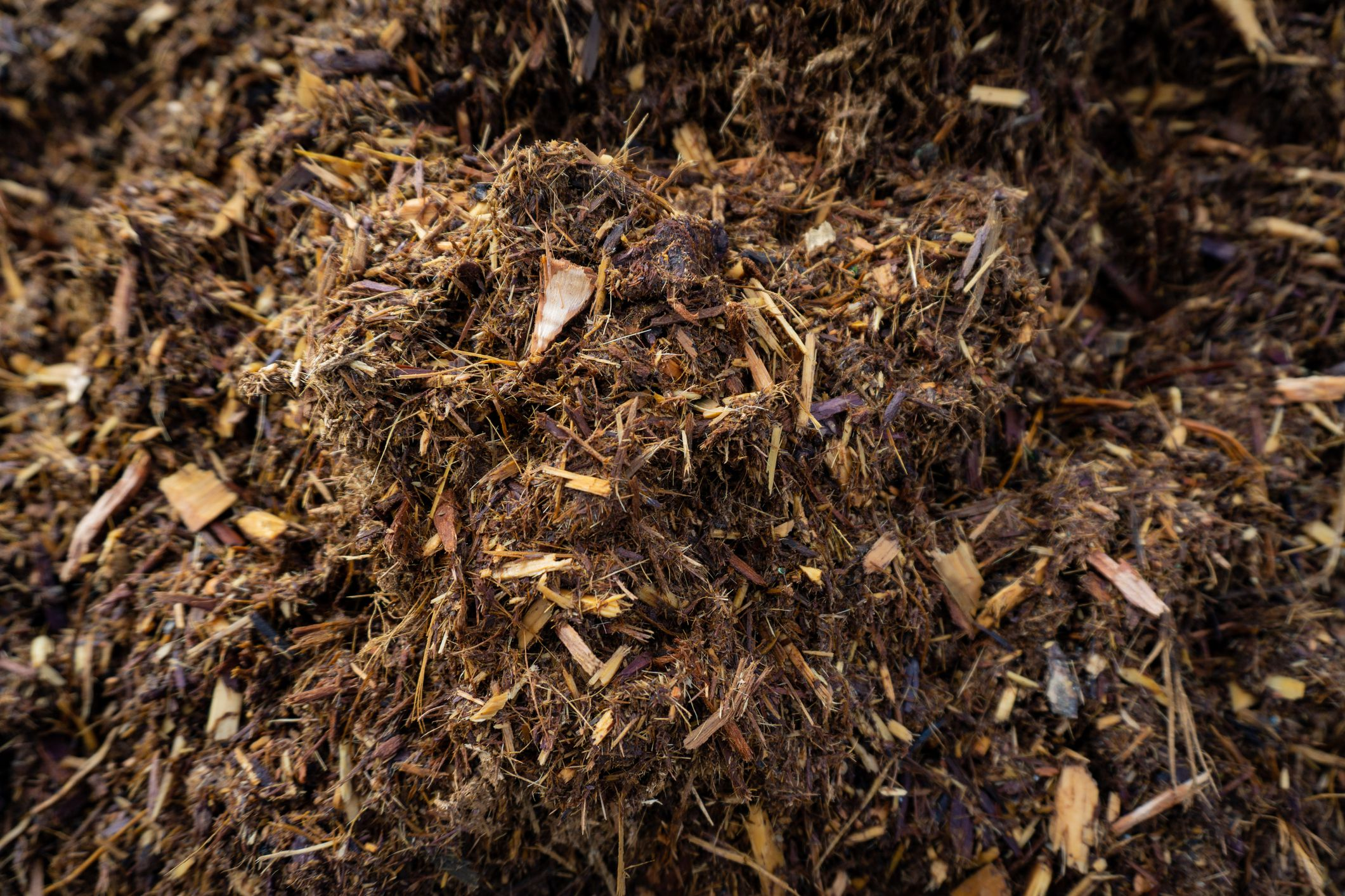 Mulch Types For Your Flowerbeds