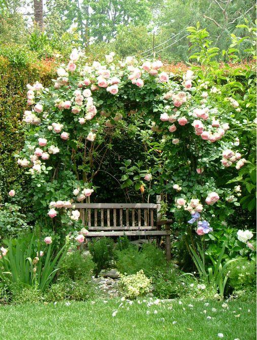 imágenes del jardín inglés