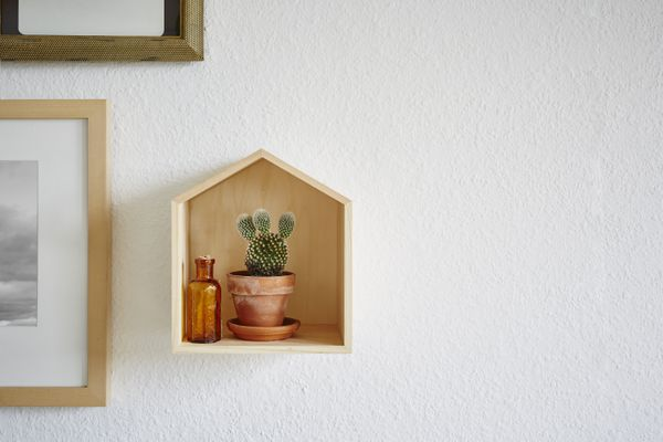 Potted Plant Against Wall At Home