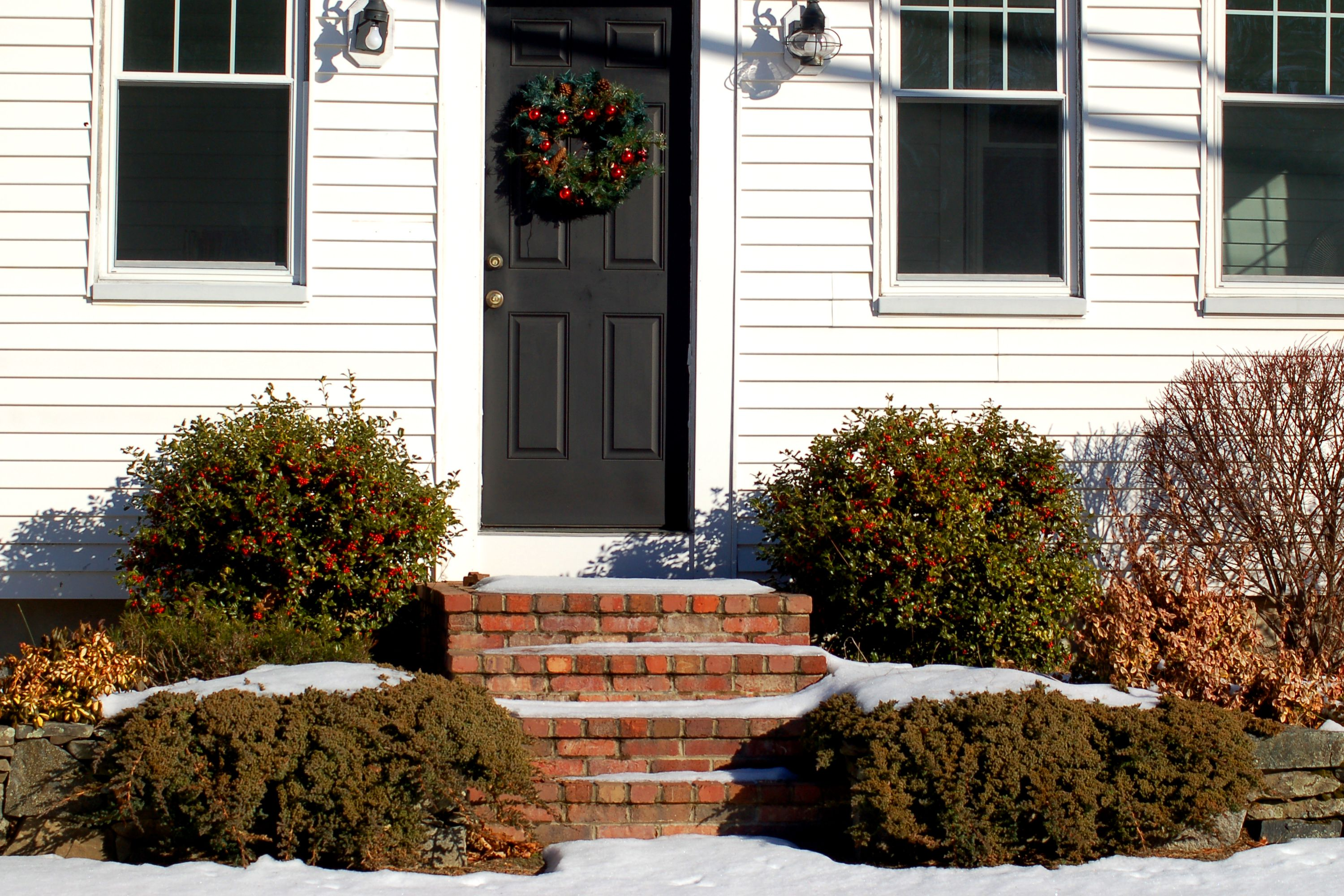 Photo shows that the best outdoor Christmas decorations can just be good landscaping.