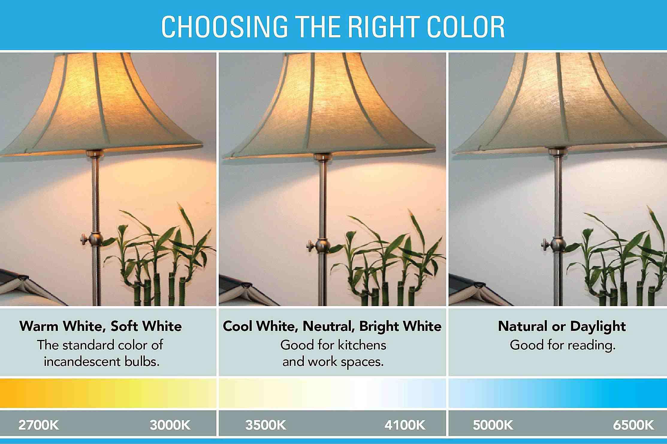 Light Bulb Colors >> How To Decorate Using Led Edison Bulbs