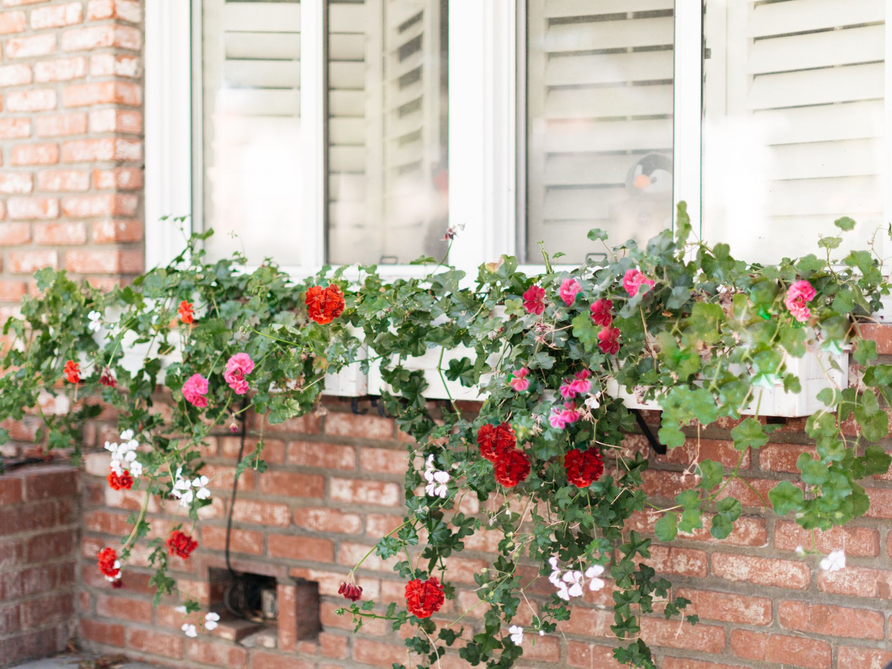 12 DIY Window Box Ideas for Your Home