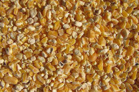 organic cracked corn for chickens