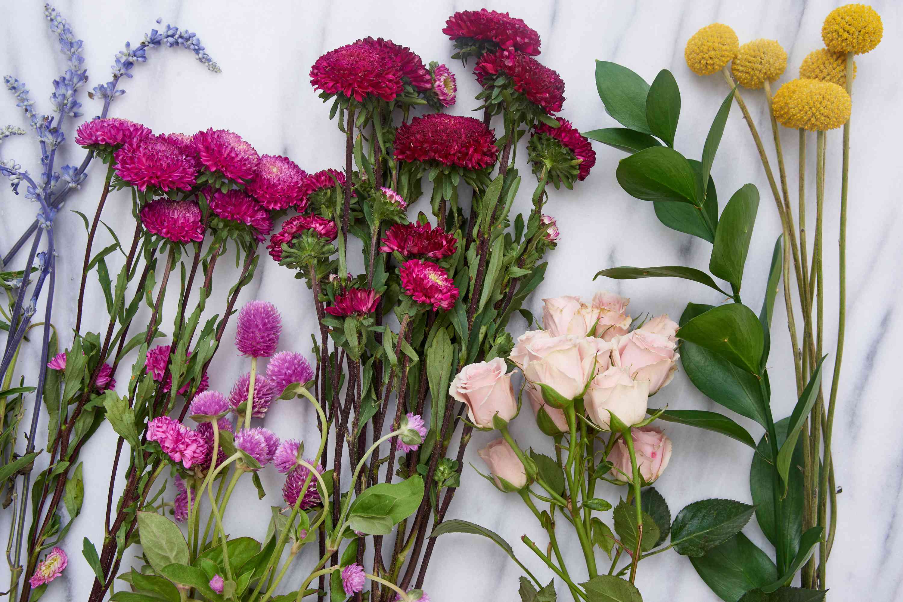 selecting which flowers to dry
