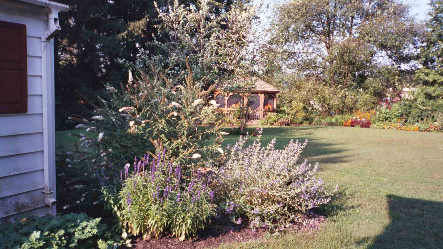 Flowering garden next to house with a defined border and gazebo in the background.