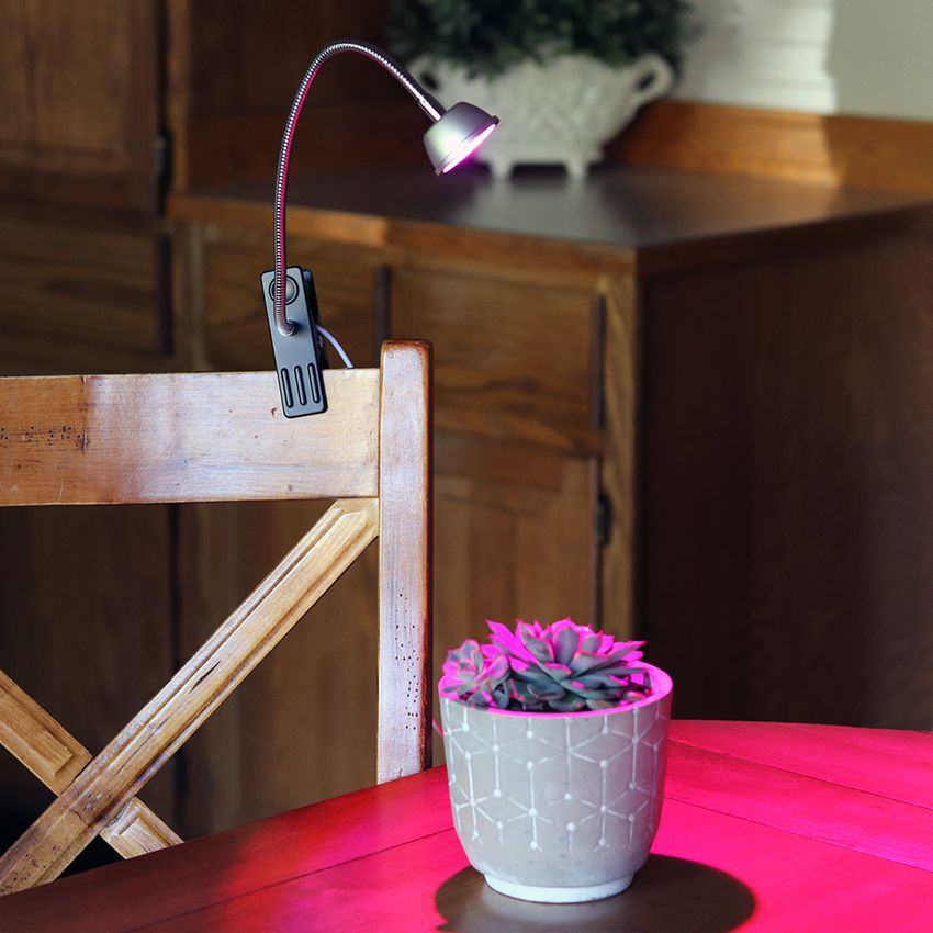 Aceple LED 6W Desk Plant Grow Light