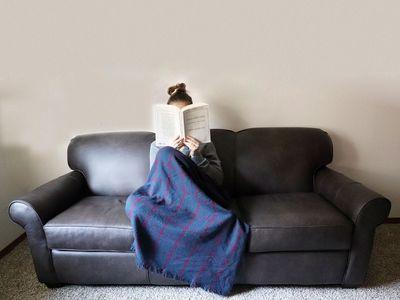 Wayfair Custom Upholstery Jennifer Leather Sofa Bed