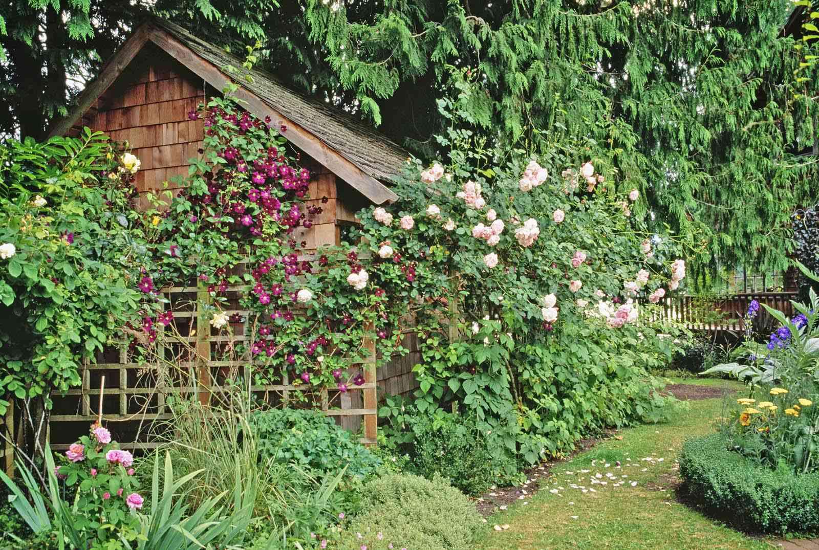 Trellised Cottage