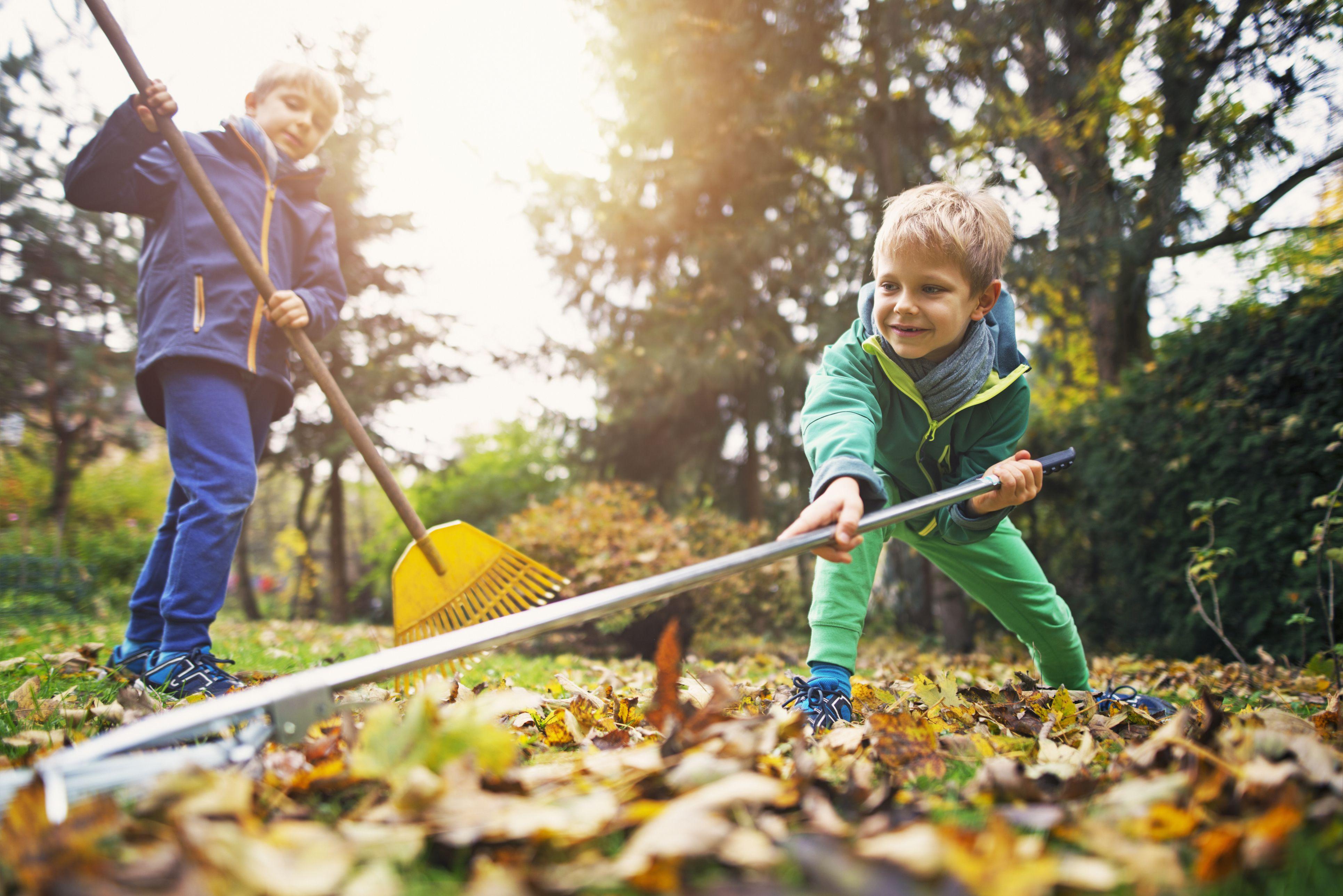 Cute little boys raking autumn leaves